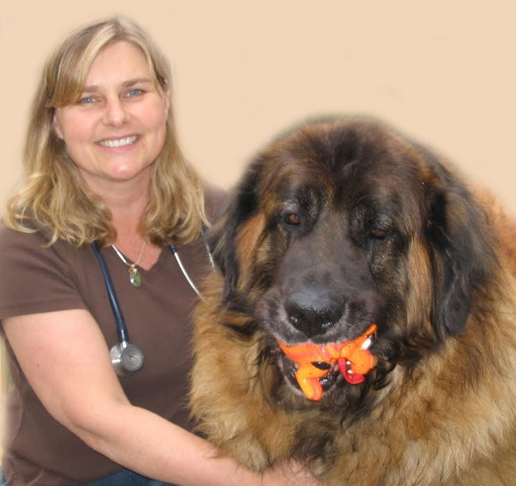 Dr. Michelle Scotti, licensed veterinarian, with one of many dogs and cats that share her life.